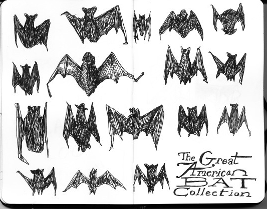 MOLESKINE_BATS_DRAWING_COLLECTION_DREW_CHRISTIE_SEATTLE
